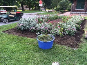 Garden bed with full bucket