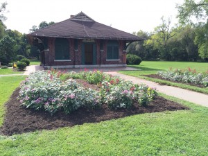 Garden beds and park building